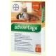 Краплі інсектоакарицидні Bayer Advantage 40 - для котів і декоративних кролів вагою до 4 кг (упаковка 4 піпетки, ціна за 1 шт)