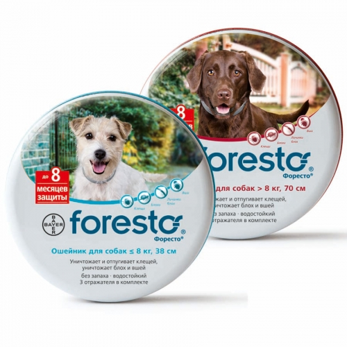 Royal Canin Dog Obesity - Croquettes pour chien