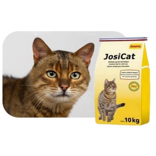 Корм Royal Canin для кошек. Бесплатная доставка от 2000 р