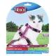 Шлея з повідцем для кошенят Trixie