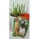 Трава для котів Зернятко, 40гр